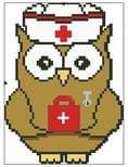 Nurse Ollie Owl